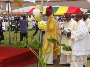 ordination Wa 5
